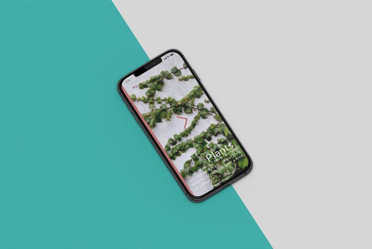 Plants. app ontworpen door Nien design